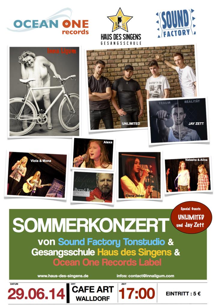Sommer Konzert 2014